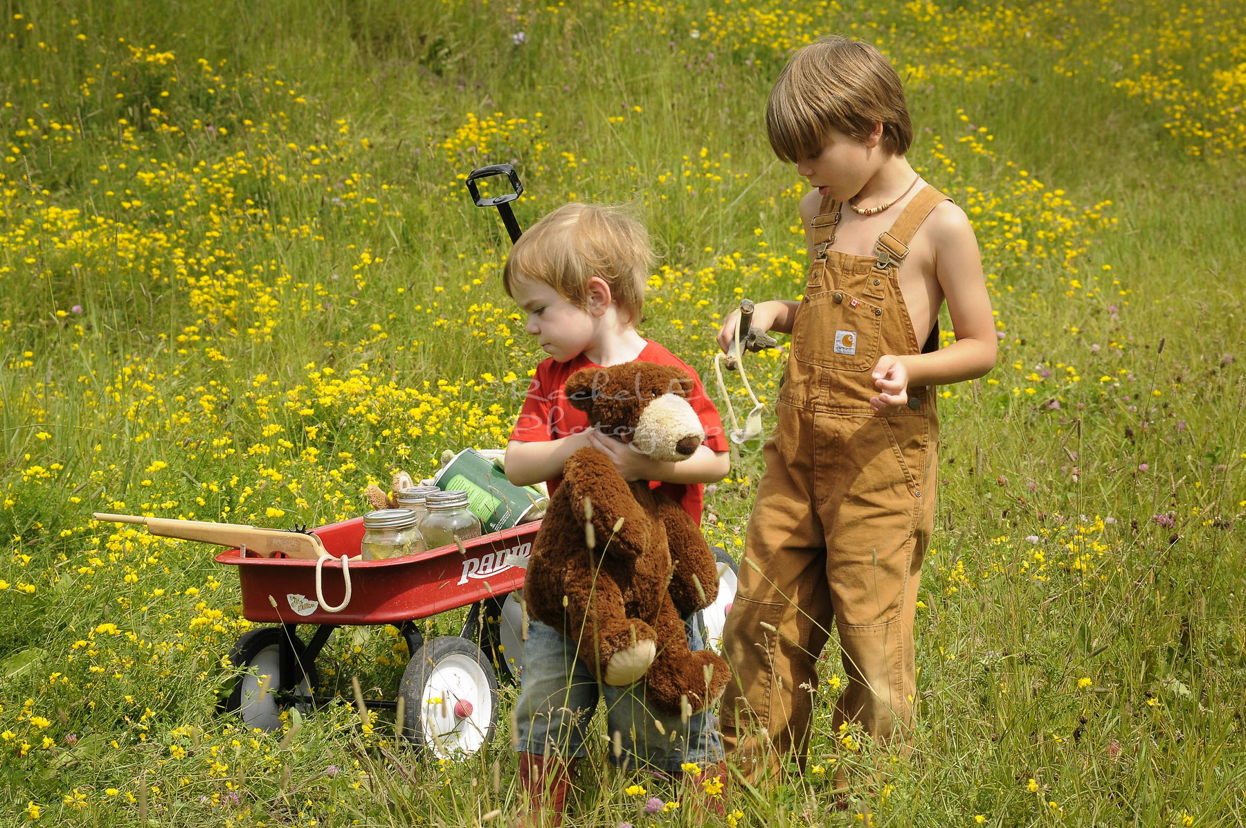 little boys with their wagon