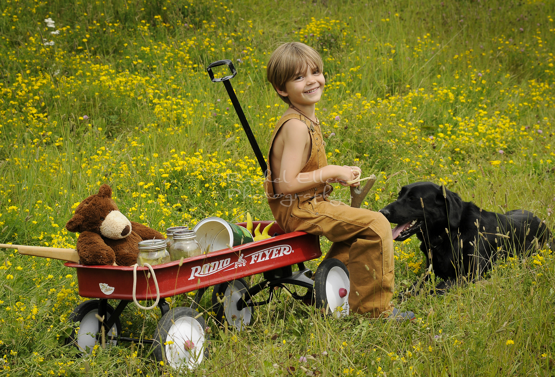 little boy portrait with his wagon and dog