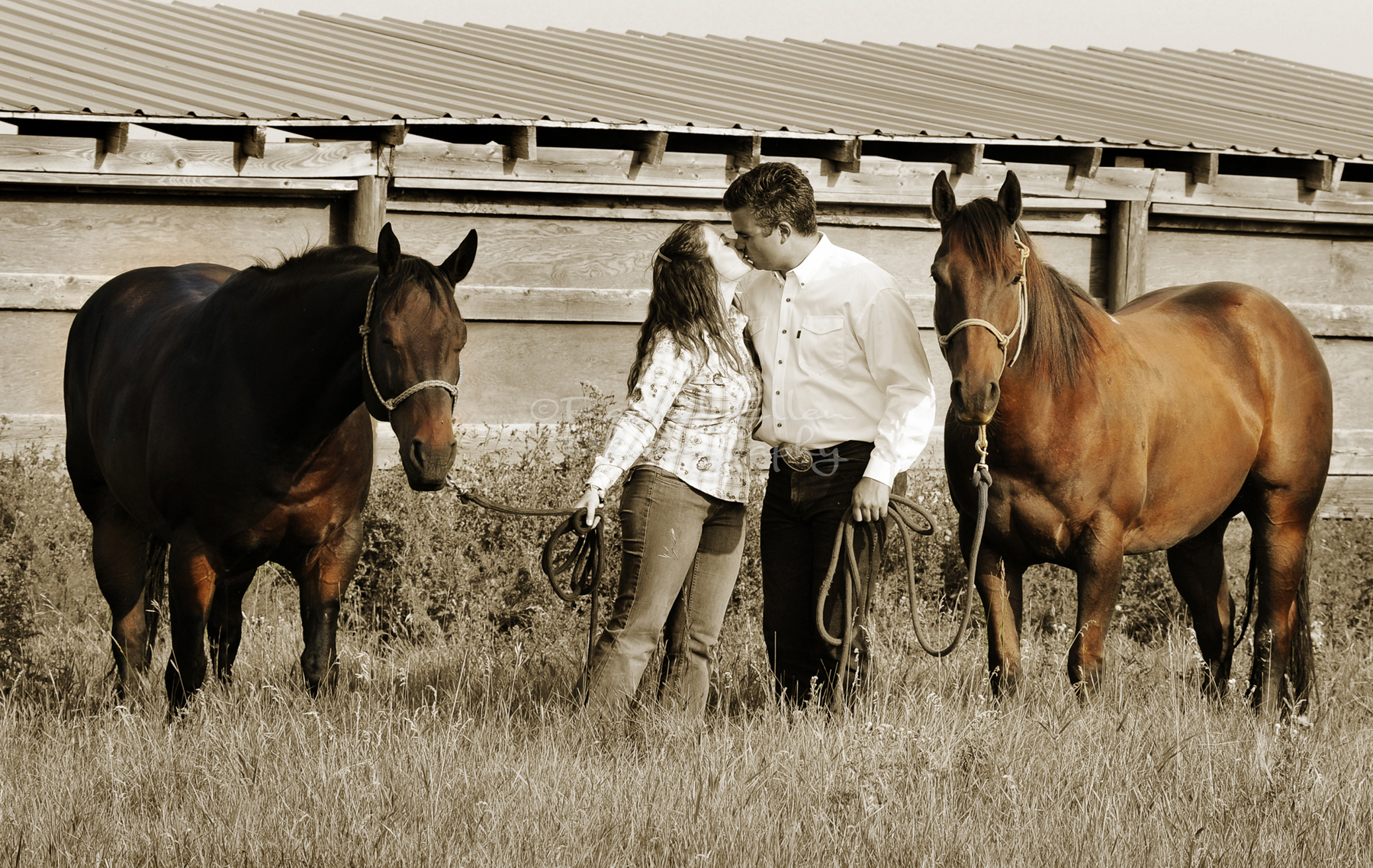 cowboy engagement portraits