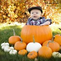 Fall Baby Portraits