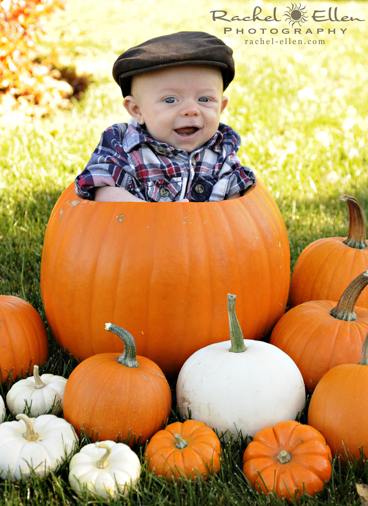 Fall Baby Portraits