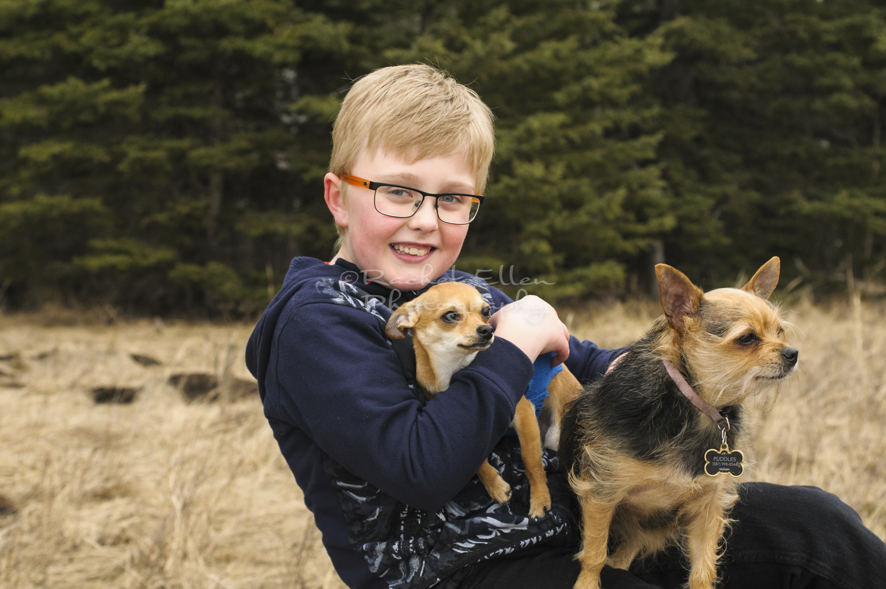 Candid Portrait of boy with dogs near Millarville