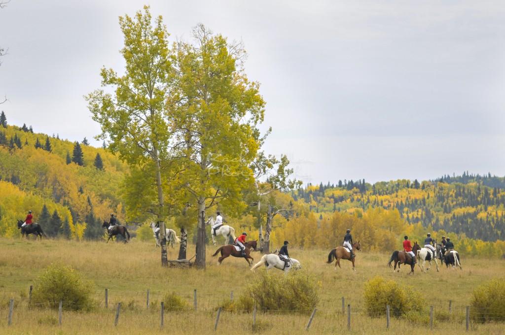 Horseback riding club -The Hunt