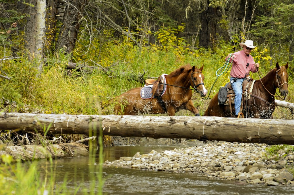 crossing a creek on a horse